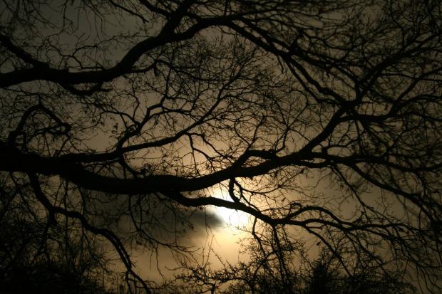 darkness-1232724_1280